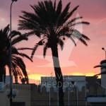 Tunezja. Tunis o zachodzie