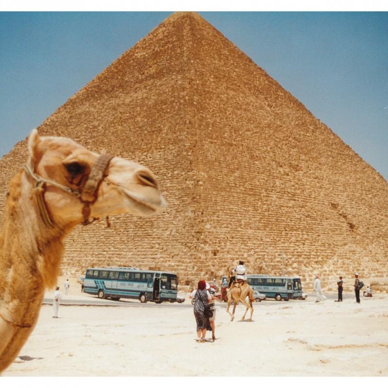 Egipt 9-oryginal